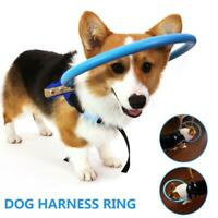 Blind Pet Dog Safe Halo Guide Training Behavior Aid Dogs Protect Angel Wing ^
