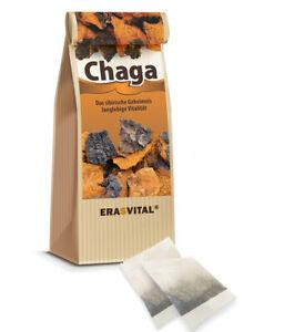 CHAGA PILZ - Echter sibirische Chaga Birkenpilz wild geerntet 60Teebeutel = 60g