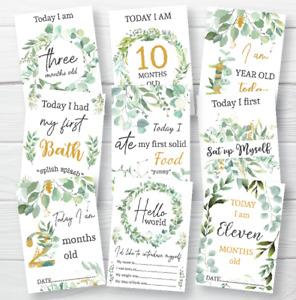 Baby Milestone Cards • Eucalyptus Memory Cards • Botanical Baby Gift • 1st Year