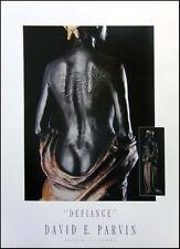 "David Parvin ""Defiance"" Poster Make an Offer!"
