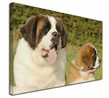 More details for st bernard dog and puppy x-large 30