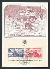 Liechtenstein MK 1972 pubblio blocco 9 maximum carta carte MAXIMUM CARD MC cm d5463