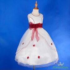 Ivory Burgundy Scoop Formal Flower Girl Dress Wedding Communion Party 10 #220A
