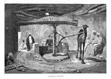 EGITTO un mulino di mais in basso EGITTO-stampa antica 1884