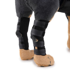 Neoprene Pet Leg Protect Joint Wrap Brace Dog Foot Protect Pet Knee Pads S