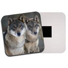 Wild Wolf Pair Fridge Magnet - Wolves Snow Winter Forest Dog Predator Gift #8106