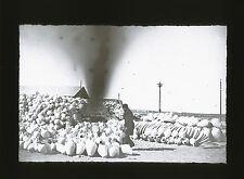 Verre Positif - TUNISIE 1900 - Potier Poterie - 12