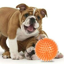 6/8/10cm Squeaker Ball Dog Toy Indestructible Balls for Pet Dog Puppy Chewers
