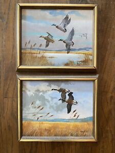 Cape Cod Marsh and Geese paintings by Ben Neill