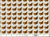 2006 Common Buckeye butterfly  Sc 4000  MNH  sheet of 100