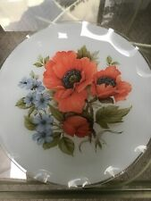 Frosted Glass Plate With Poppies And Blue Flowers 13 Inches Across