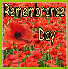 REMEMBRANCE DAY - POPPY DAY Display Teaching Resources PRIMARY KS1 KS2 on CD ROM