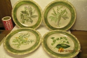 "Set of 4 American Atelier Bouquet Garni 8"" Salad Plates"