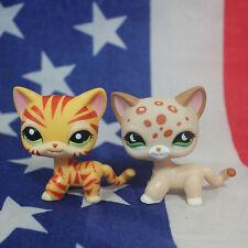 2pcs Littlest pet shop Figure Toy orange tiger striped cat & pink cat lps208