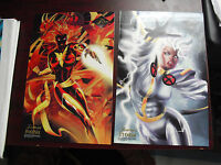 Lot of 2 1994 Flair Prints Large Glossy Cards Storm and Phoenix LOOK