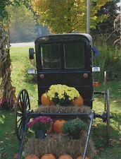 "*Postcard-Halloween-""Pumpkins Loaded on a Nice Cart w/Hay & Flowers"" (#80)"