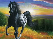 Appaloosa horse hillside sun landscape limited edition aceo print of painting