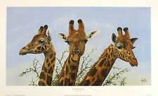 "JONATHAN TRUSS ""Eyelashes To Die For"" giraffe NEW art SIZE:33cm x 61cm  RARE"
