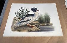 Vintage Audubon Lithograph JEROME TROLLIET 1974 Hand Signed LE Art Print