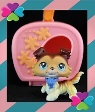 Littlest Pet Shop AUTHENTIC BROWN WHITE COLLIE DOG 58 SAGE Carrier Ribbon Collar