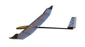 NEW RC Model HLG Trotter Kit glider hybrid carbon aramid handlaunch sailplane
