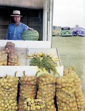 """1939 Vegetable Stand, Rice County, MN Old Photo 8.5"""" x 11"""" Reprint Colorized"""