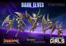 Raging Heroes - Dark Elves - Harpies - Troops