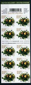 [G11242] Belgium 2009 Christmas good sheet very fine imperf