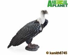 Mojo Animal Planet GRIFFON VULTURE solid plastic toy wild zoo bird predator  NEW