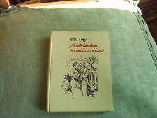 Else Ury Nesthäkchen im weißen Haar  ca. Anno 1927 Meidinger Verlag gut erhalten