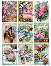 Vintage Flower Seed Packets Collage - Advertising Art Print