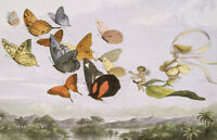 "perfact 36x24 oil painting handpainted on canvas""Fairies,butterflies""@N3153"