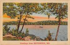 Betterton Maryland Greetings Scenic View Linen Antique Postcard J71596