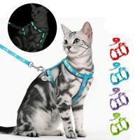 Harnais réglable avec laisse pour chat petit chien chaton veste Réfléchissant