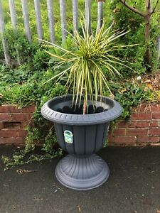 MND20 Chic Grey Finish Metal Wire Urn Planter Suitable For Indoor//outdoor Use.