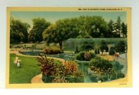 Syracuse New York Burnett Park Zoo Linen Vintage Postcard