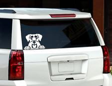 Schnauzer Peeking Dog Window Decal