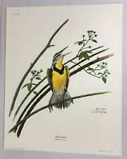 "Ray Harm ""Meadowlark"" Print ~ Limited Edition, Signed, 1969"