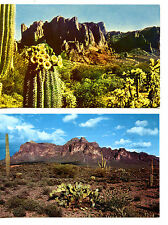 Superstition Mountain-Southwest Desert-Cactus-Arizona-Vintage Postcard Lot of 2
