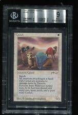 Camel BGS Graded 9 Arabian Nights MTG magic Plains Rare