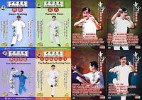 Chinese Kungfu Yi Quan ( Da Cheng Quan ) complate Series by Zhang Guangyu 8DVDs