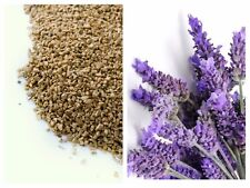 More details for pin cushion filler ground walnut shells lavender scented 500g