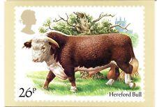 Gran Bretaña Ganado Bovino postal del año 1984 (CY-232)