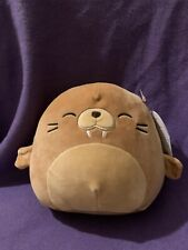 Squishmallows Bruce the Walrus 7 / 8 inch Plush Toy Nwt