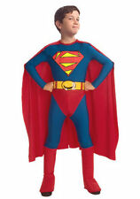 Polyester Superhero Fancy Dresses for Boys