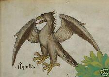 """Los médicos Medieval Libro Antiguo Gran Bretaña Tractatus de hebris Águila Estampado 11x8"""""""