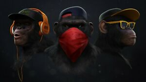 Cool Monkeys - Headphones Glasses Bandana Wall Art Large Poster & Canvas Picture