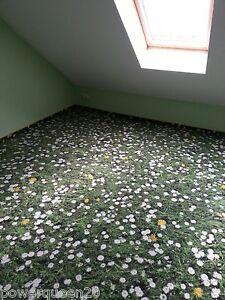 Hotelqualität hochwertiger Teppichboden wie eine Sommerwiese*1 m² Preis TOP!