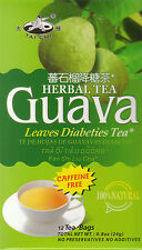 Herbal Tea Guava Leaves Tea 12 Tea Bags New