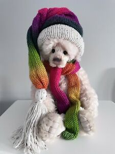 KNITTED MATCHING LONG TAIL SLOUCHY TASSLE HAT & SCARF CHARLIE BEARS OMBRE MULTI